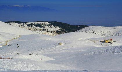 Το ιδιωτικό χιονοδρομικό κέντρο Χρυσό Ελάφι