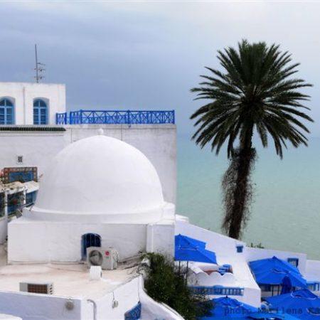 Οδοιπορικό στην Τυνησία-Φωτογραφίες